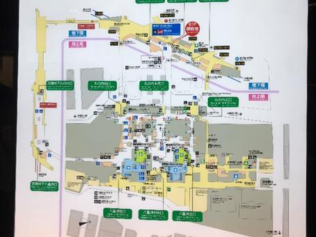 Biggest station in Tokyo