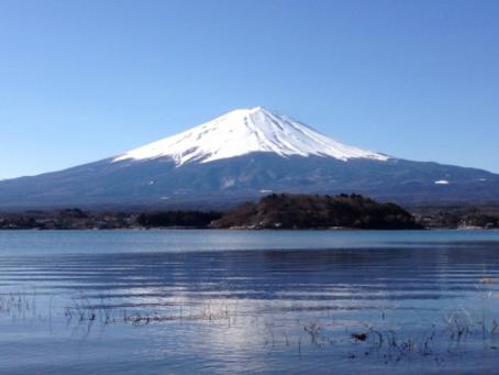 Day Trip around Mt Fuji