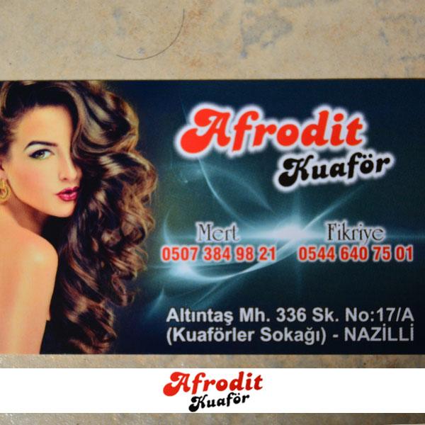 Afrodit_kuaför_nazilli_(15)