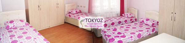Tokyuz-Kiz-Yurdu-Aydin (1).jpg