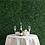 Thumbnail: Grass Wall