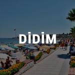 DİDİM