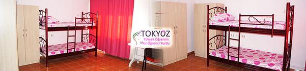 Tokyuz-Kiz-Yurdu-Aydin (3).jpg