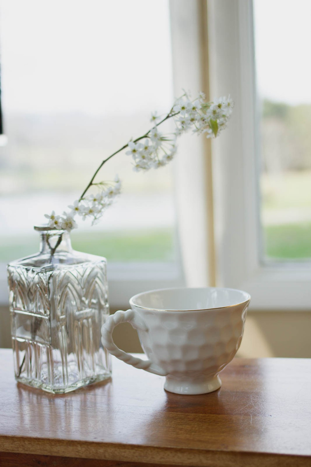 Peaceful photo of cup and plant stem in vase