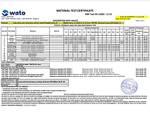 Wato Test certificate.PNG