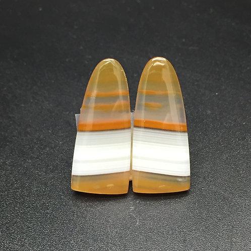 """Agate """"Piranha"""" - Paire - 18,90 carats - Brésil"""