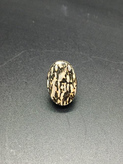 Os de dinosaure agatisé - 10.28 carats - Utah