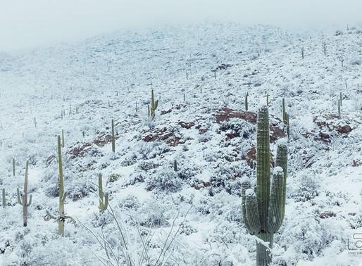 Arizona sous la neige !