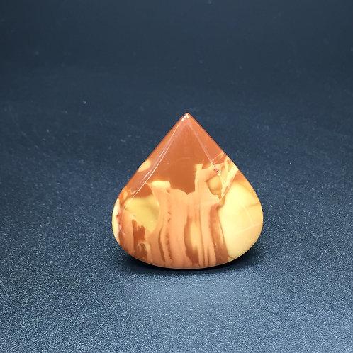 Jaspe Bruneau - 24.36 carats - Idaho, USA