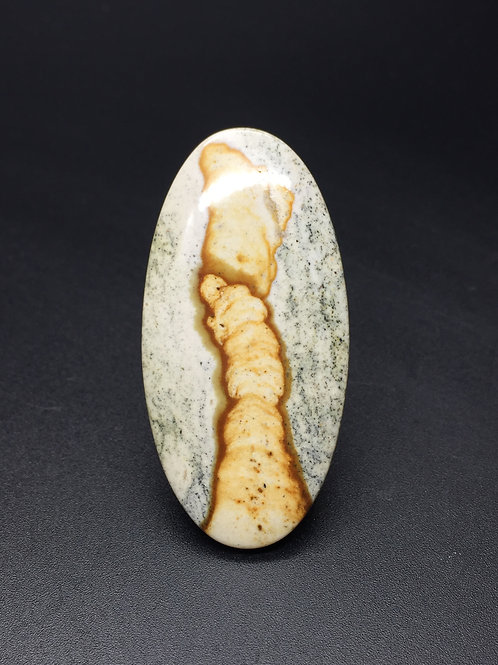 Paiute picture stone - 47.83 carats -  Oregon, USA