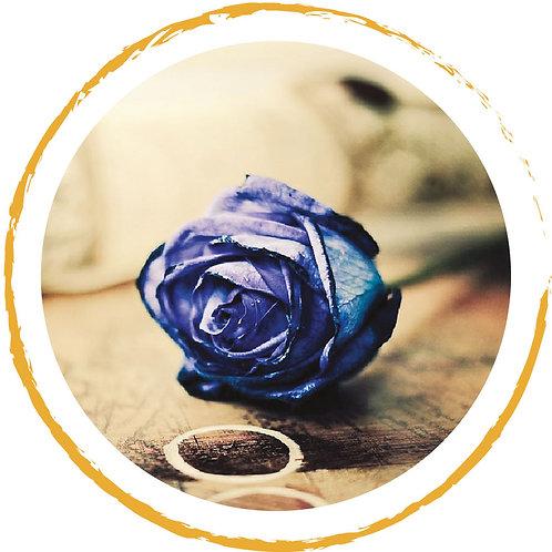 Poukaz na hru Rád modrej ruže