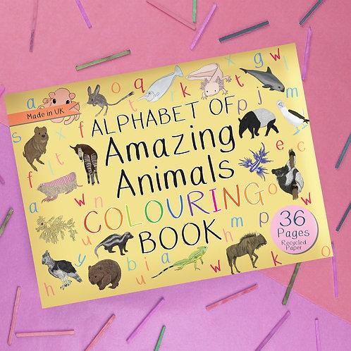 Amazing Animal Colouring Books