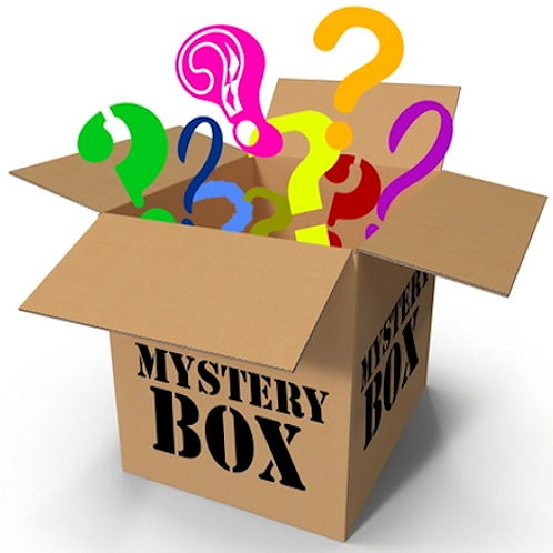 Surprise Mystery Toy Box