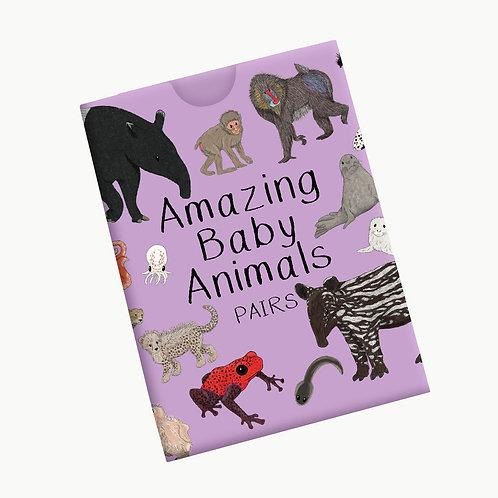 Amazing Baby Animal Pairs