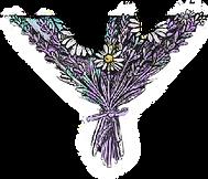 lavender_trans.png