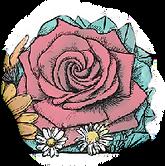 rose_trans.png
