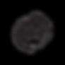 cGMP_Logo.png