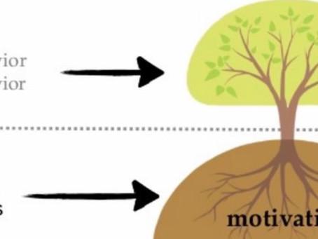 Yaşam Ağacı