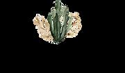 Cabella logo.png