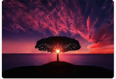 tree_red_sunrise.jpg