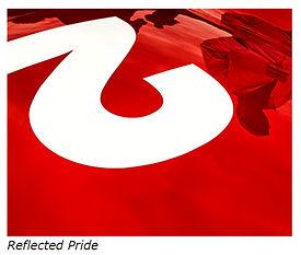 Reflected Pride - Mar 2020.jpg