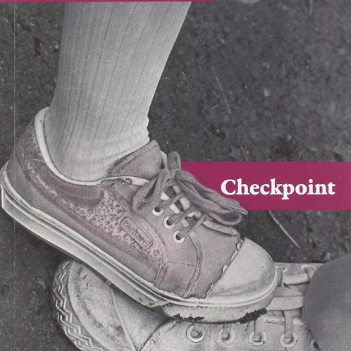 Checkpoint (Elsa Drucaroff)
