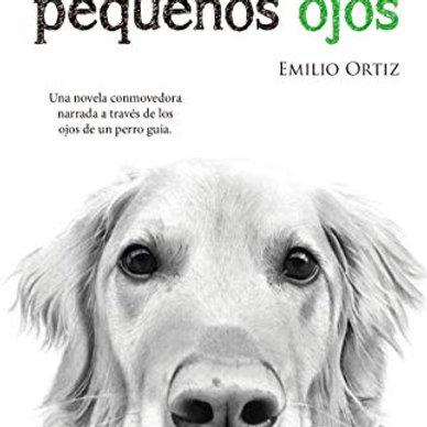 A través de mis pequeños ojos (Emilio Ortiz Pulido)