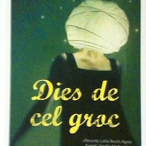 Dies del cel Groc (Laia Fàbregas)