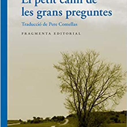 El petit camí de les grans preguntes (José Tolentino Mendonça))