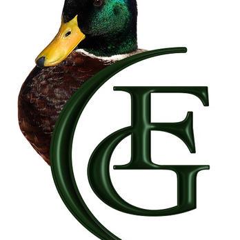Favicon Logo.jpg