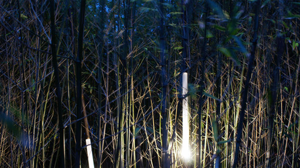 bambus, bamboo lamp, cool lamp, jungle lamp, contemporary design, arts and crafts, rotterdam design, retro lamp