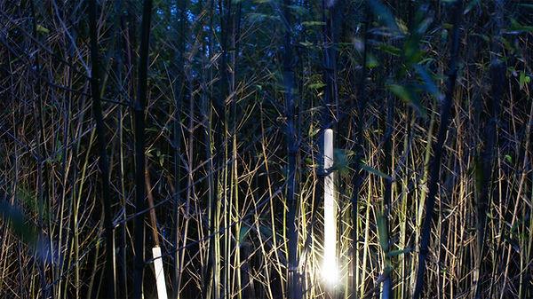 bambus, bamboo lamp, cool lamp, jungle lamp, contemporary design, arts and crafts, rotterdam design, retro lamp