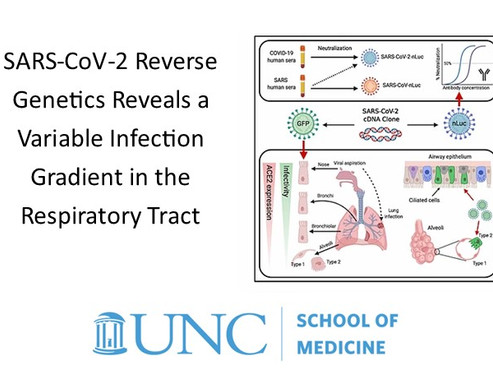University of North Carolina Medical School Research shows: