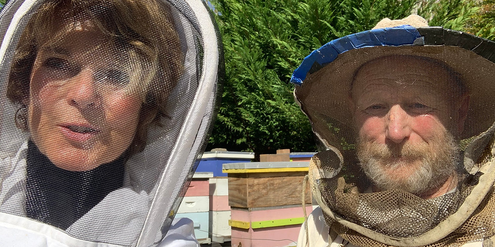 THE BEES HAVE IT!