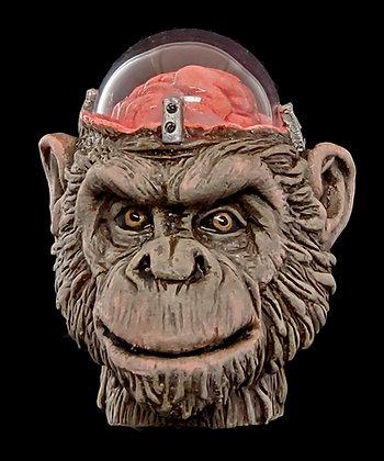 Frankensteins Monkey