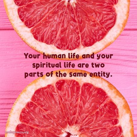 Human and spiritual life are one.