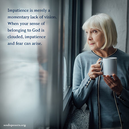 Impatience is lack of vision.