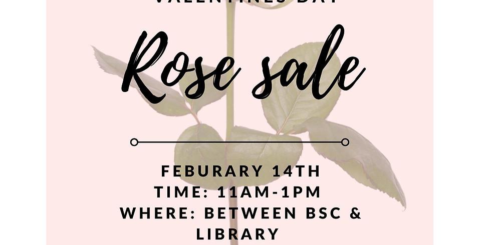 Valentines Day Rose Pre-Sale