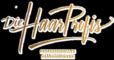 Logo_Harrprofies_quer gold_neu_4.png