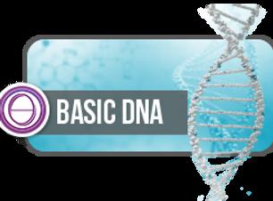 Basic DNA.png