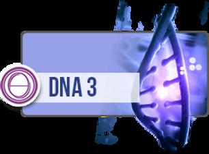 DNA 3.png