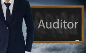 Moder Auditor.jpg