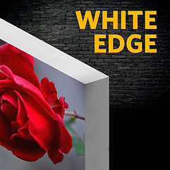 White Edge.jpg