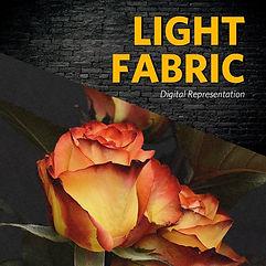 Light Canvas.jpg