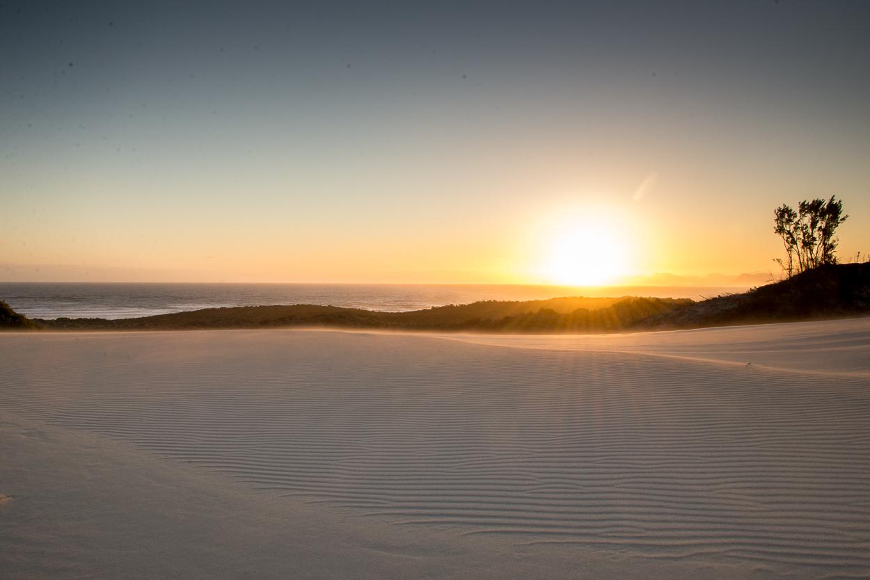 DunesPlaate01