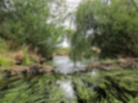Moorabool paddle 026.JPG