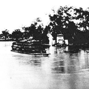 P.S. Cato with wool barge on Barwon Rive
