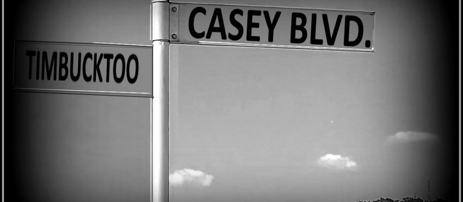 414. Casey Boulevard
