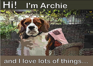 Archie Loves Lots of Things COVER.jpg
