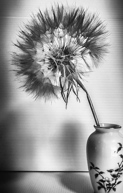 Make a wish -6.jpg